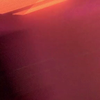 WildxBella's avatar