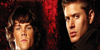 Winchester-Brothers
