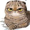 windfancy's avatar