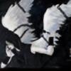 winterbolero's avatar