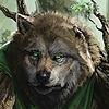 winterchip's avatar