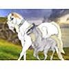 winterswildstable1's avatar