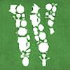 WirdouDesigns's avatar