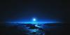 Wishes-Hopes-Dreams's avatar