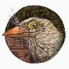WishingArrow's avatar