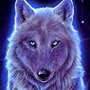 witchofthewhiterose1's avatar