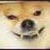 wodnyrak's avatar
