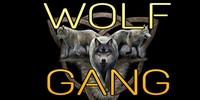 WOLF--GANG's avatar