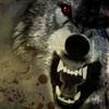 Wolf-86's avatar