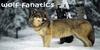 Wolf-Fanatics's avatar