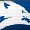 wolf-nv's avatar