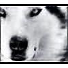 Wolf-Whisperer's avatar