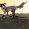 WolfCat100's avatar