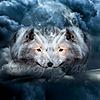 wolffan210's avatar