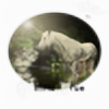 Wolfie2511's avatar