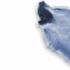 Wolfiesden's avatar