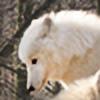 wolfkART's avatar