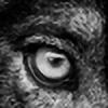 WolfKinSkoll's avatar