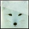 wolfofthesnow's avatar