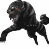 WolfoftheUnderworld's avatar