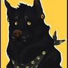 WolfPaw02's avatar