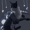 Wolfspirit223's avatar