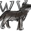 WolfvilleFromPixiv's avatar