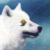 Wolven-Wonderland's avatar