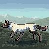 WoollySusi's avatar