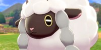 Wooloo-Lovers