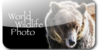WorldWildlifePhoto's avatar
