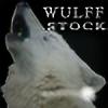 wulff-stock's avatar