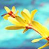 X3RG10's avatar