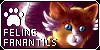 x-Feline-Fanatics-x