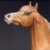 x-infernale's avatar