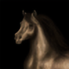 xDanielleeee's avatar