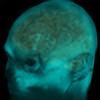 XenonZebra's avatar