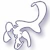 xesthetic's avatar