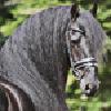 xFashionStarr's avatar