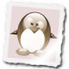 xhenon's avatar