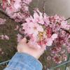 xiaomui0904's avatar