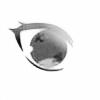 xKAiTO-x's avatar