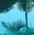 xLAGIRLx's avatar