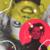 xPEGASVS's avatar