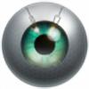 xraystyle's avatar