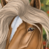 xSapience's avatar