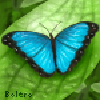 xSweetMelody's avatar