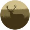 Xsyl's avatar
