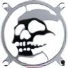 xtole13's avatar