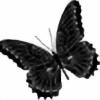 XViridanBurrerflyX's avatar